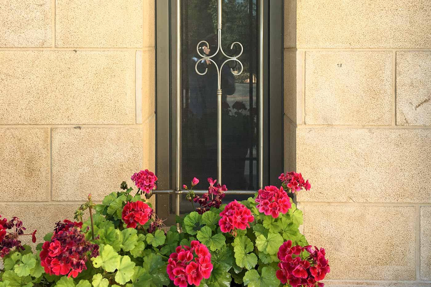 Hisham Merhi Villa - Window with Flowers